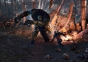 the-witcher-3-wild-hunt-screenshot-2